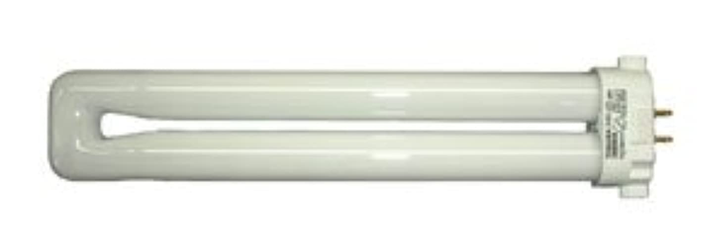 驚かす知性プロポーショナルエスコ AC100V/13W蛍光灯電球 EA815LD-19