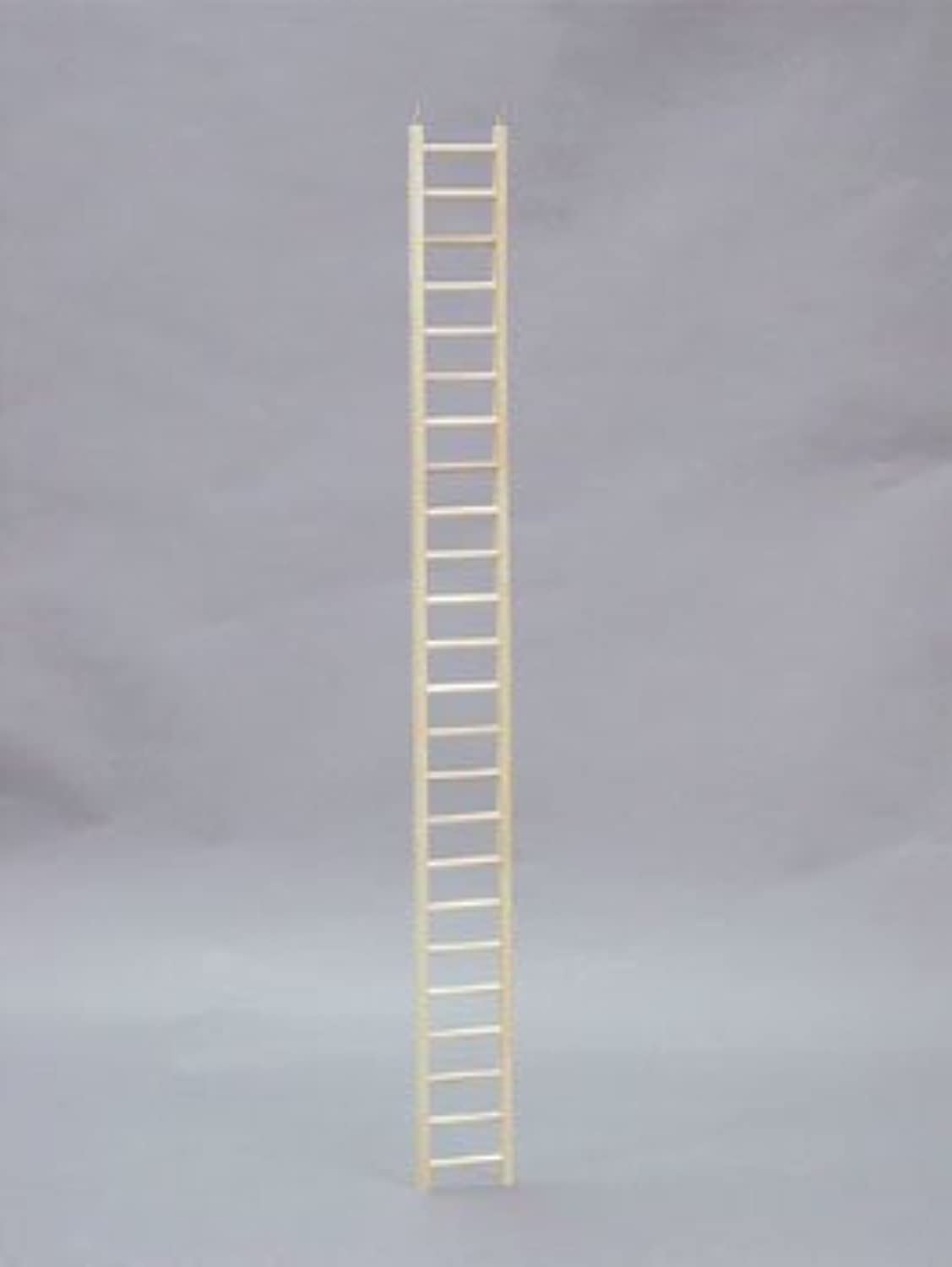 North American Pet BBO22795 Bob Parred Ladder, 48Inch by North American Pet
