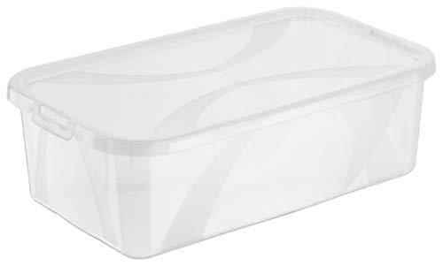 Rotho Arco 8er-Set Aufbewahrungsbox 5l mit Deckel, Kunststoff (PP) BPA-frei, transparent, 8 x 5l (34,0 x 20,0 x 10.6 cm)
