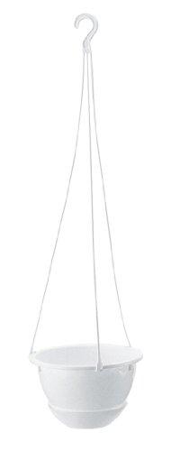 吊鉢ハイボール 6号ホワイト