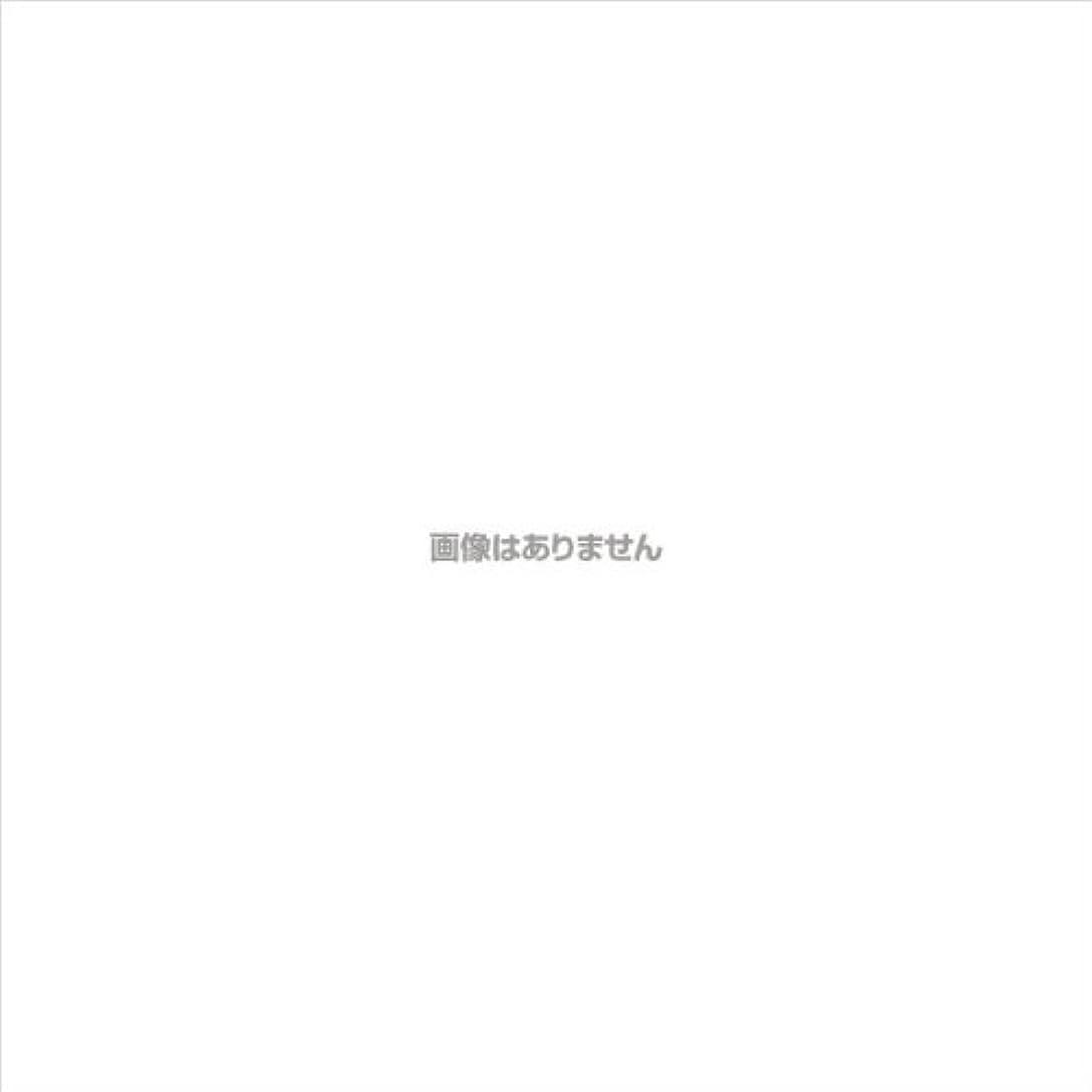 懇願する後者姿勢エブケアプラスチックグローブ粉付 箱入 / 1002 100枚 L ケース(30小箱入)