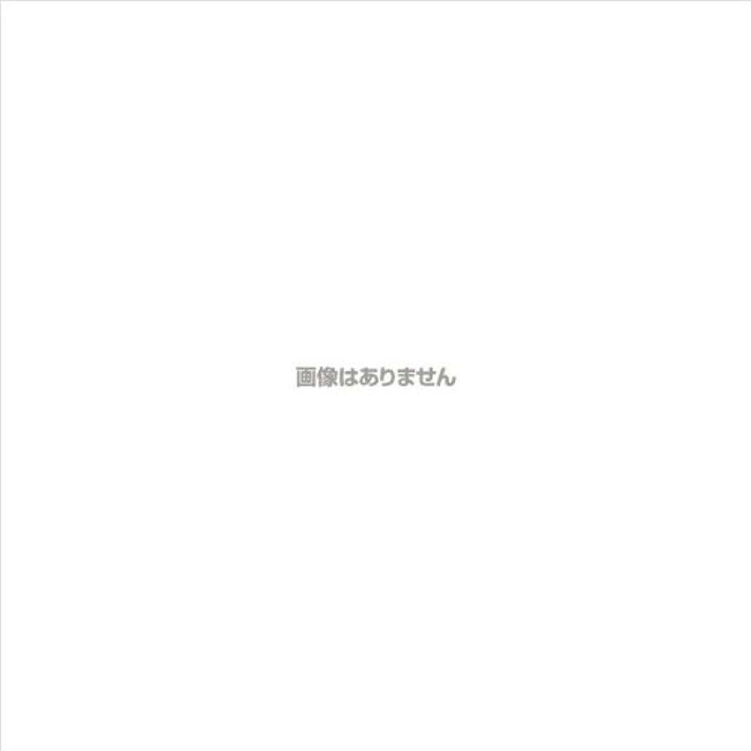 不振マーキング蒸留するニトリルNEOプラス パウダーフリー / 574 L ホワイト 100枚入 ケース(20箱入)