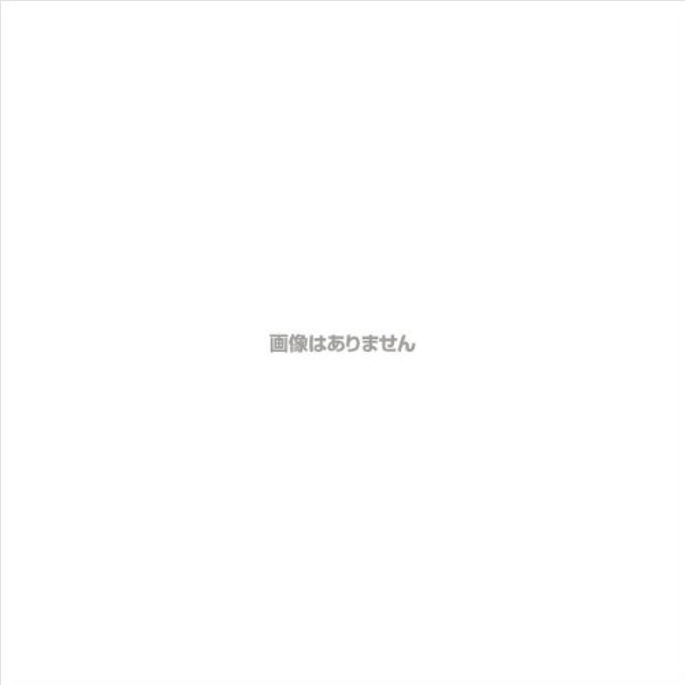硬化する祭り血エブケアプラスチックグローブ粉付 箱入 / 1002 100枚 L ケース(30小箱入)
