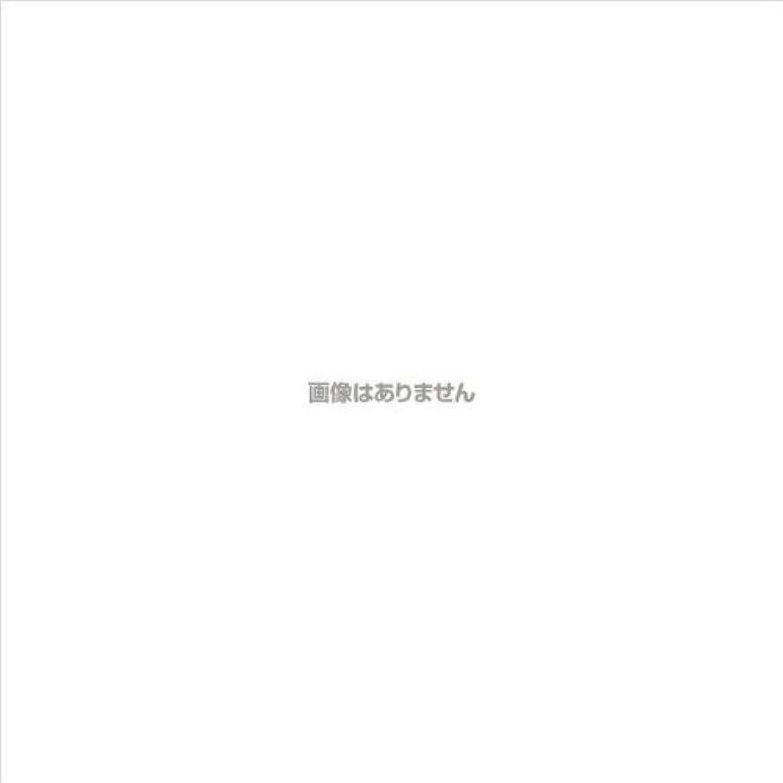 枯渇する我慢するドメインPVCグローブα 粉つき クリア / FR-5113 200枚 L ケース(10小箱入)