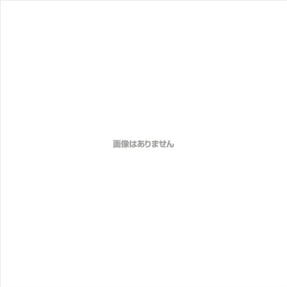 コミットメントマグ未払いエブケアプラスチックグローブ粉付 箱入 / 1002 100枚 L ケース(30小箱入)