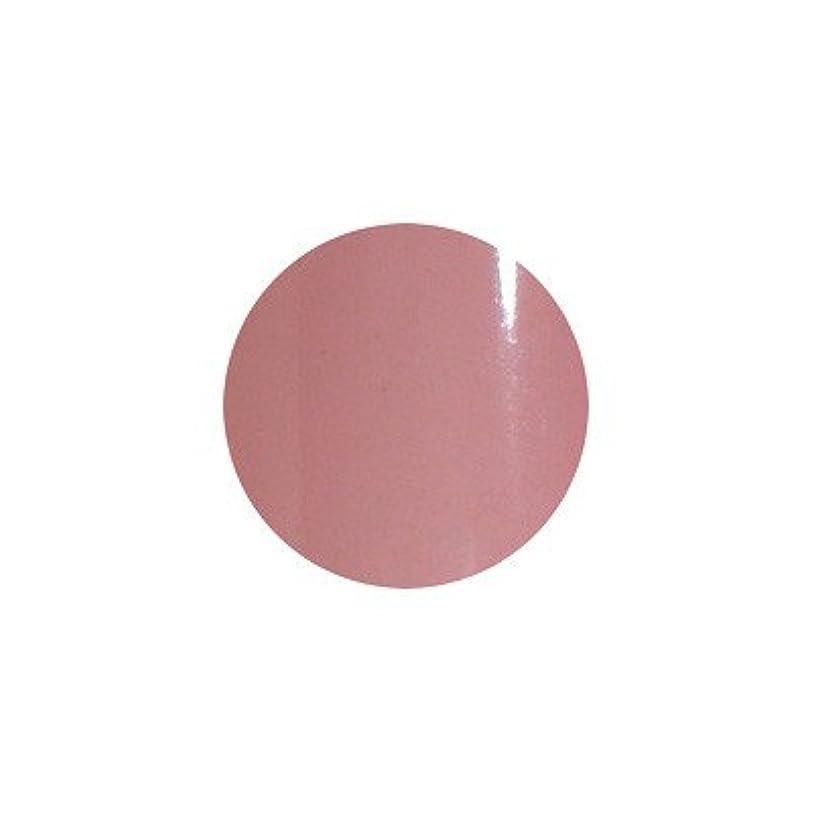 引退する雰囲気びんsacra カラージェル No.004 薄墨桜