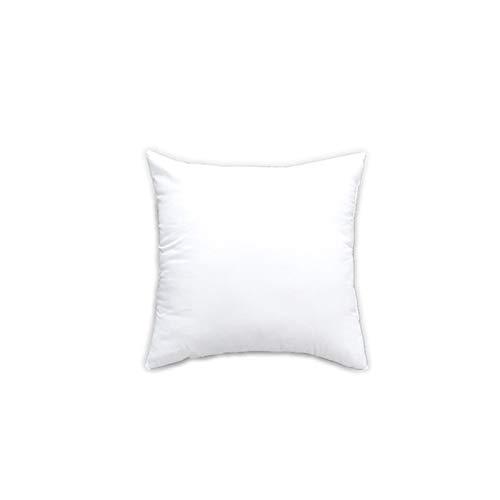 LOOEST Cojín De Cojín De Puro Sólido Clásico Divertido Cabeza Suave Almohada PP De Algodón De PP De PP Mujer Personalizado Cojín De Relleno Werproof (Color : White, Specification : 70x70cm 1200g)
