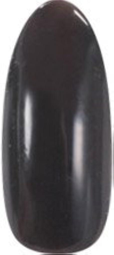 風味請求可能状★para gel(パラジェル) アートカラージェル 4g<BR>AM28 ダークブラウン