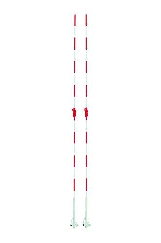 TOEI LIGHT(トーエイライト) バレーネットアンテナ B-3783 トーエイライト バレーネットアンテナ
