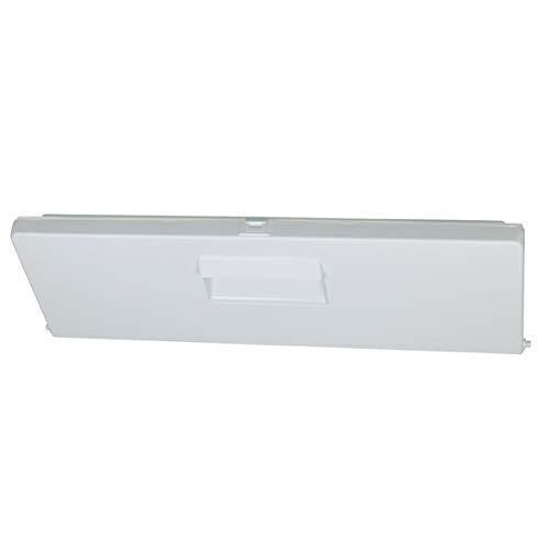 Clapet de porte du compartiment congélateur blanc pour réfrigérateur Bosch Siemens 296700 00296700