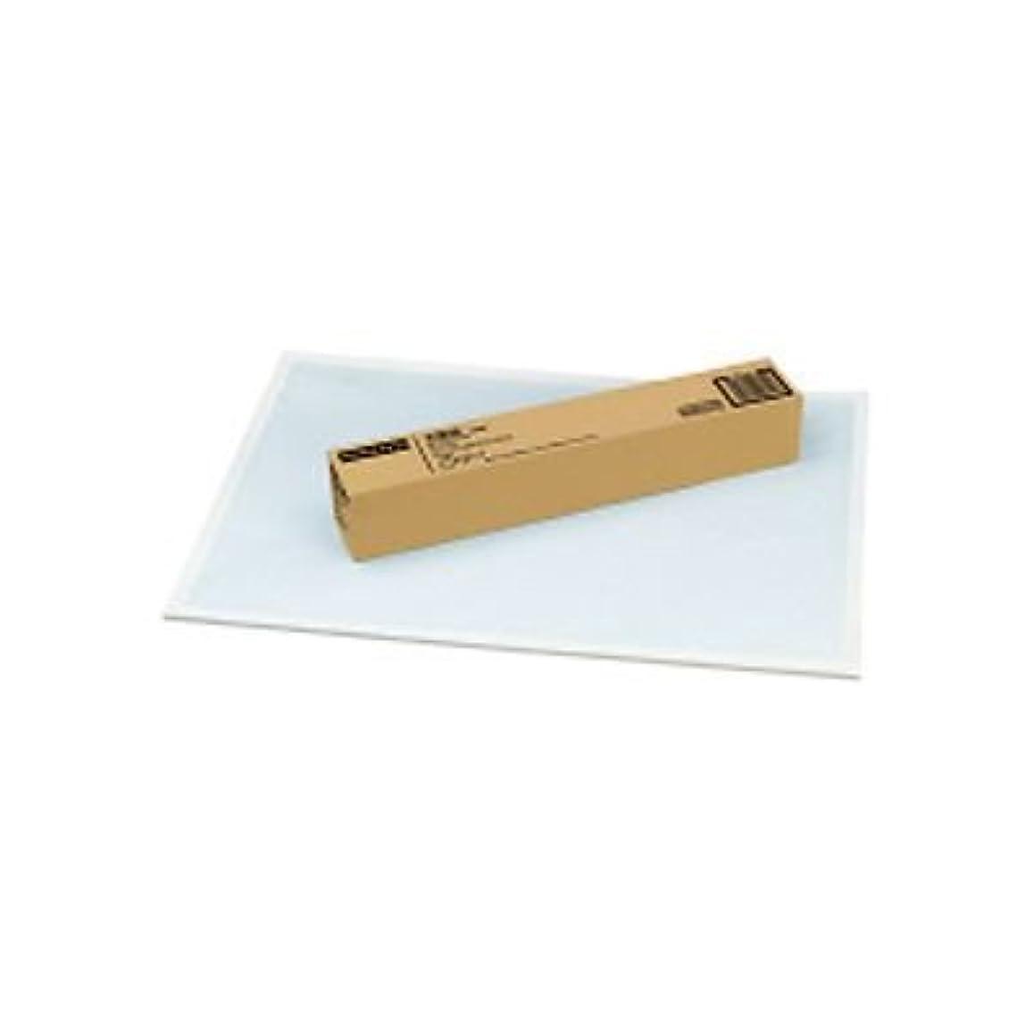 上質方眼紙 A1 ブルー刷(1mm方眼) 1束(50枚入) 品番:?-16 注文番号:51692940 メーカー:コクヨ