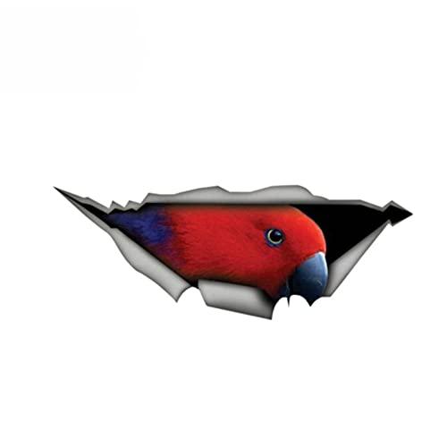 ZQZL Pegatinas de automóviles de Animales Red Eclectus Parrot Etiqueta engomada del Coche 3D Pet gráficos de Vinilo de Vinilo Bumper, 13 cm * 4 cm
