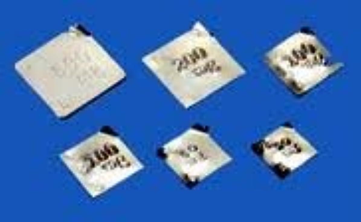 単独で発送高尚なイシダ 板状分銅 基準分銅型(ステンレス) F1PSB-100M-JCSS