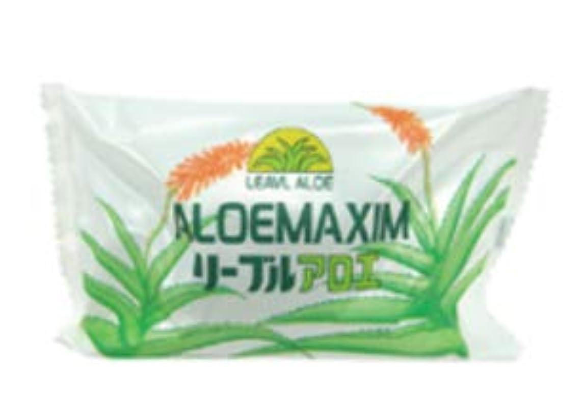 ブルゴーニュ不実入口フタバ化学 アロエマキシム アロエ石鹸 100g 100個セット 業務用石鹸