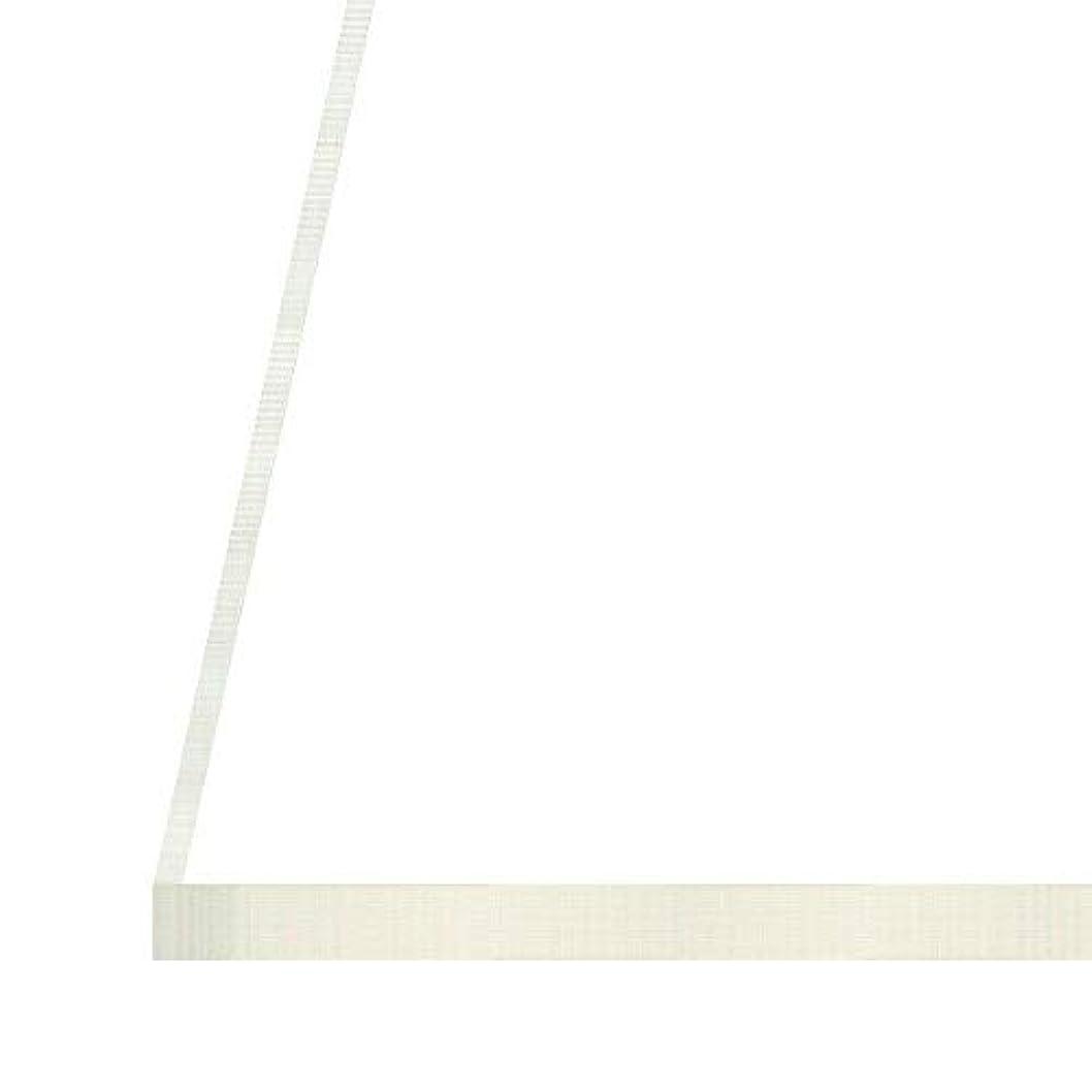 ゲームタヒチ賞日本製 アクリル板 透明 (押出板) 厚み 20mm 300×540mm ★縮小カット1枚無料 カンナ仕上★ (業務用?キャンセル不可)