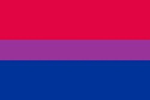 U24 Aufkleber Bi Pride Flagge Fahne 8 x 5 cm Autoaufkleber Sticker