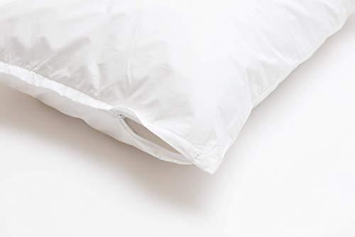 Dream Designs Organic Kapok Body Pillow