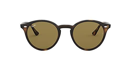 conseguir gafas sol rayban online