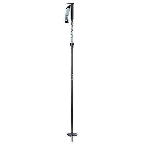 Line Pollards Paintbrush Adjustable Ski Poles