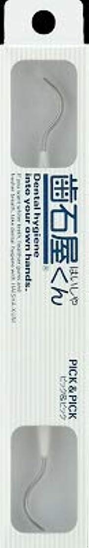 合理的天才ファンシー【まとめ買い】歯石屋くん ピック&ピック ×12個