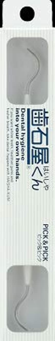 アンデス山脈改善するベテラン【まとめ買い】歯石屋くん ピック&ピック ×6個