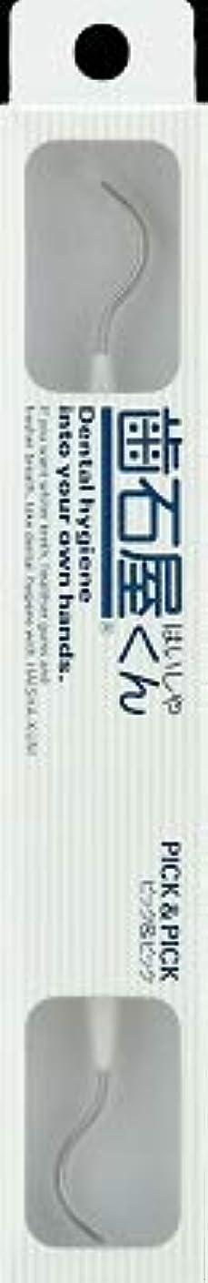 自明登山家ウィンク【まとめ買い】歯石屋くん ピック&ピック ×6個