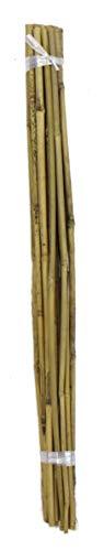 DARO DEKO Bambusrohr 1 Bündel mit 20 Stäben je 60cm
