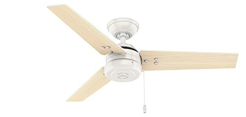 """Hunter Cassius Indoor / Outdoor Ceiling Fan with Pull Chain, 44"""", Fresh White"""