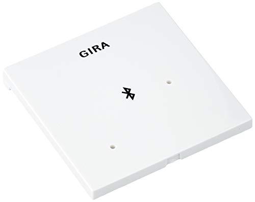 GIRA 2868734 Dockingstation Blindabdeckung, RWS 228803
