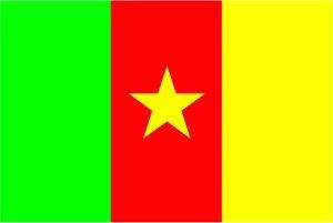 FRIP - XXL Kamerun Fahne Flagge Gr. 2,50x1,50m mit Ösen