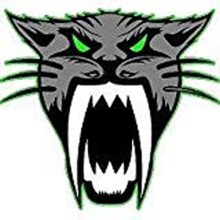 Arctic Cat Logo 4