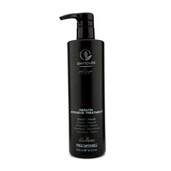 Paul Mitchell Awapuhi Sauvage Gingembre Kératine Traitement intensif (pour cheveux secs et abîmés 500 ml