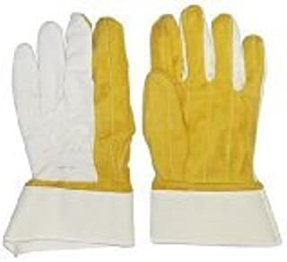 Knox-Fit Gloves Short Cup 12 Pairs