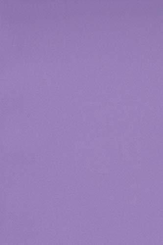 20 x Blatt Violett 250g Tonkarton DIN A4 210x297mm Burano Violet - ideal für Karten, Scrapbooking, Basteln und Dekorieren mit Papier, Einladungen, Kunst und Handwerk