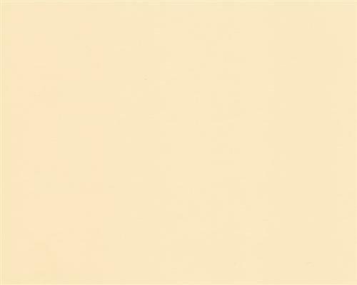 250 Blatt DIN A5 Chamois farbiges 160g/m² Office-Papier. Hochwertiges Spitzenpapier Copy Laser Inkjet - Flyer Newsletter Poster Faxeingänge Wichtige Mitteilungen Warnhinweise Ordnungssysteme Memos