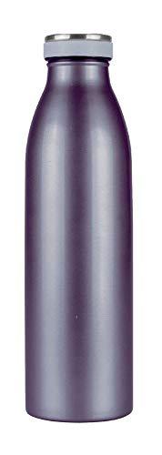 Steuber Edelstahl Thermo Trinkflasche 500 ml doppelwandige Isolierflasche mit auslaufsicherem Deckel, Metallic-Grau