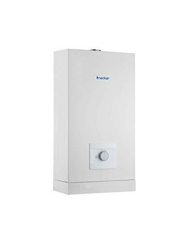 NECKAR Calentador Estanco Bajo Nox 10L Gas Natural