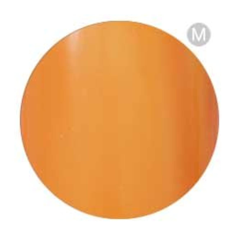 恐竜昆虫人工的なPalms Graceful カラージェル 3g 002 オレンジ