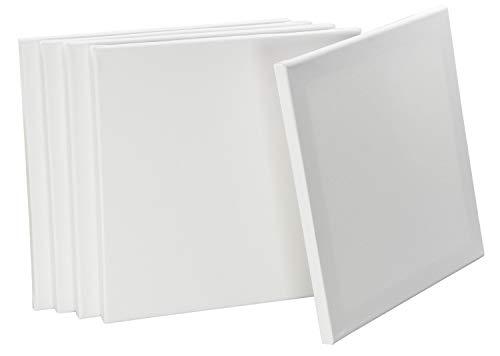 LAUBLUST Keilrahmen 30x30cm 5er Set - Leinwand Weiß 100{6c5666321730c6a55fd8c259aa3ec5752905b250d049ee79d1cdb62705ba17ea} Baumwolle - 280g/m², Vorgrundiert, Säurefrei
