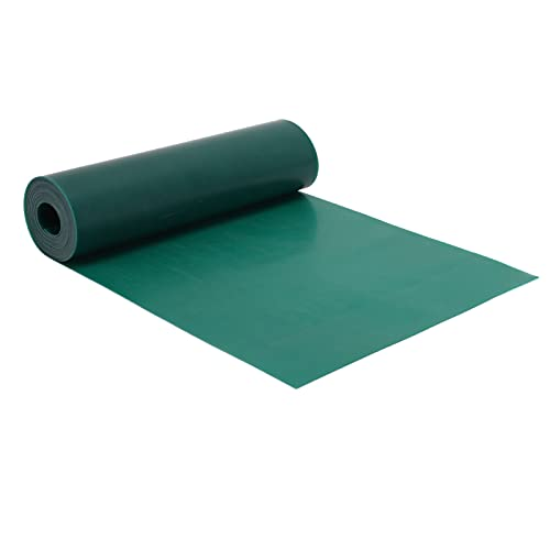 Vcriczk Banda De Goma Plana, Transparente Color Brillante Fuerte Elasticidad Bandas Elásticas Elásticas para Hacer Tirachinas para Fitness Yoga para Caza Al Aire Libre(0,55 mm * 2 m)