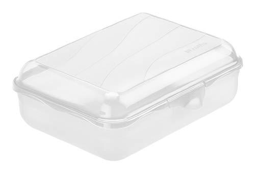 Rotho Fun Vesperdose 1,25l mit Klickverschluss, Kunststoff (PP) BPA-frei, transparent, 1,25l (19,5 x 14,5 x 6,5 cm)