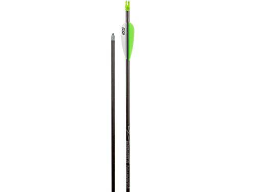 12x Carbonpfeil Easton Inspire Bogenpfeil Sportbogen Spine 750
