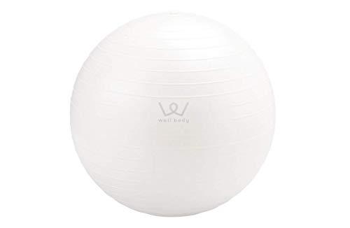 アルインコ(ALINCO) エクササイズボール30cm WBN030