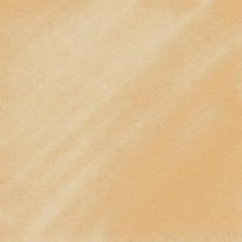 Copic Markers YR000-Sketch, Silk by Copic Marker B01KBBNS3I     | Geeignet für Farbe