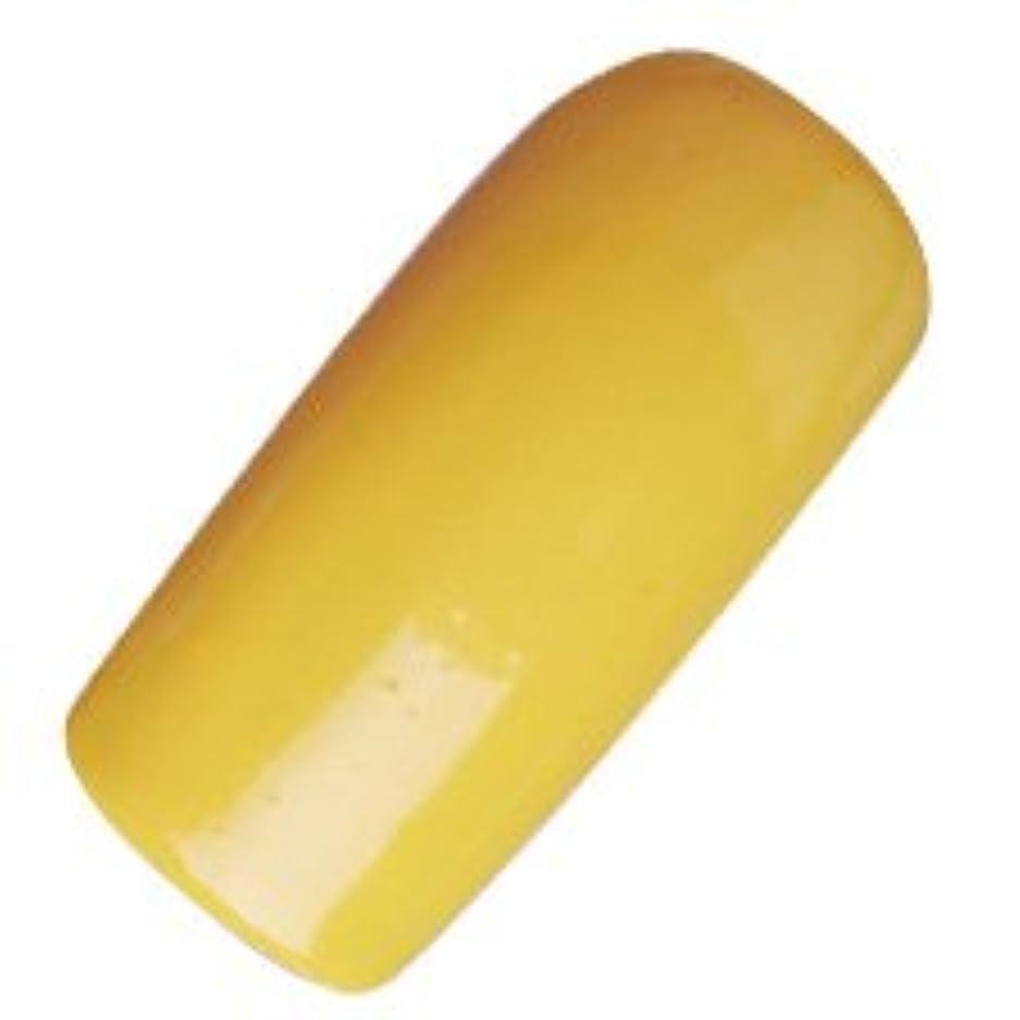 郵便屋さん最大化するアベニューDASHING DIVA(ダッシングディバ) ララジェル カラージェル 4g N―042M レモンクロメ