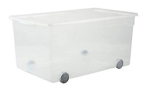 Rotho Clear Aufbewahrungsbox 63l mit Deckel und Rollen, Kunststoff (PP) BPA-frei, transparent, 63l (71,5 x 40,0 x 33,5 cm)