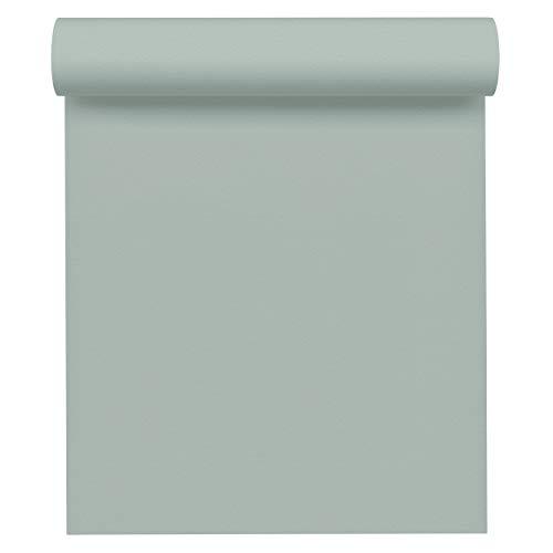A.S. Création Vliestapete Spot Tapete Uni 10,05 m x 0,53 m blau grün Made in Germany 309631 3096-31