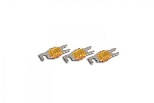 Stinger SPF58100 MIDI 100 Amp Fuses Chrome, 3-Pack