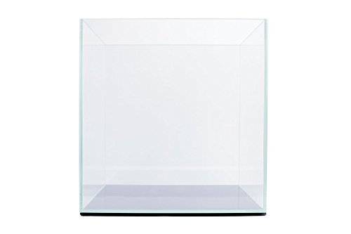Ultum Nature Systems 20C Clear Rimless Cube