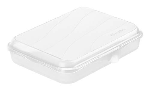 Rotho Fun Vesperdose 0.75l mit Klickverschluss, Kunststoff (PP) BPA-frei, transparent, 0,75l (19,5 x 14,5 x 4,0 cm)